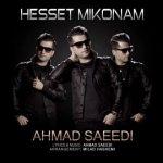 دانلود آهنگ احمد سعیدی حست می کنم